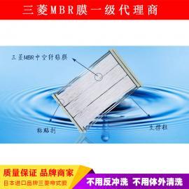 信诚HDMBR-600-SL帘式中空表皮膜组件
