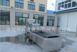 全自动蔬菜清洗机生产厂家-科盛供应大型全自动蔬菜清洗机