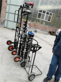 便捷式地钻挖坑机小巧耐用的打坑设备