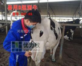 奶牛用B超观察怀孕牛图像,牛怀孕图像怎么看