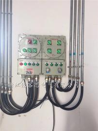 防爆增安挠性连接管两端带接头NGe-20x700G3/4内M20*1.5外