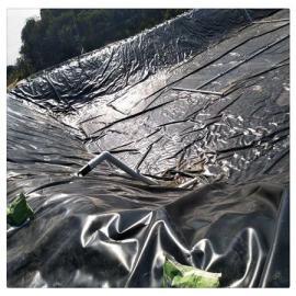 黑膜沼气池耐磨性能好抗破坏性强 沼气池土工膜