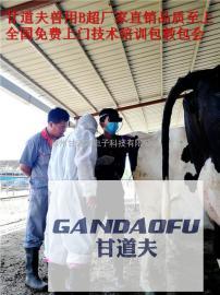 兽用B超牛用B超发情测孕使用方法培训教程