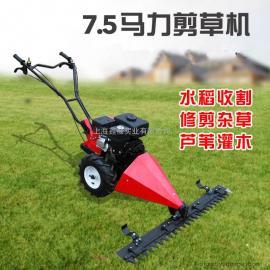 捍绿汽油小型草坪机 家用除草机果园四冲程割草机手推式剪草机