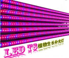 LED植物生长灯光合花草蔬菜园艺育苗灯红蓝补光灯种草专用补光灯