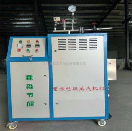 �箱�S�h保�蒸汽��t/�制品�S煤改��能�磁蒸汽�l生器