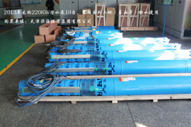 QJR热水潜水泵图片