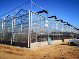 PC阳光板连栋温室,文洛式连栋智能温室