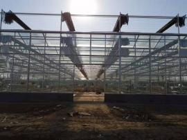 奥农苑温室工程之智能连栋玻璃温室大棚案例分析