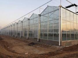 玻璃温室通风降温-温室风机、水帘通风降温系统