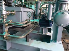 意大利SETTIMAZNYB01020202低压润滑泵03