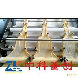 大型自动腐竹机器 不锈钢多功能腐竹机械 全自动腐竹生产线