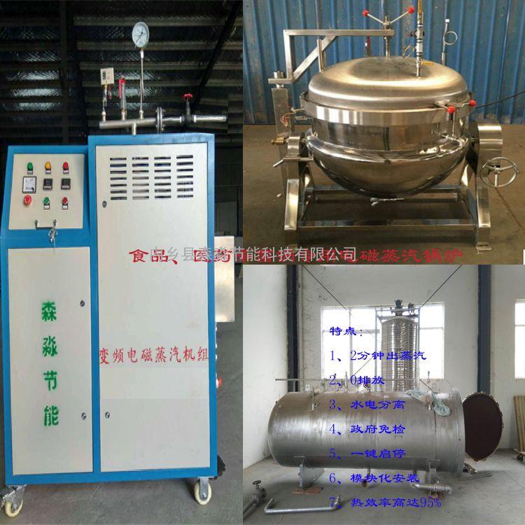食品厂杀菌环保蒸汽发生器/制药厂消毒灭菌电磁免检蒸汽锅炉