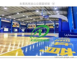 飞利浦室内篮球场馆照明灯具篮球场LED灯