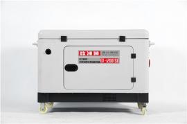 自动型10KW欧洲狮柴油发电机