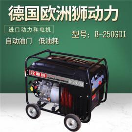 电力应急汽油两用电焊机