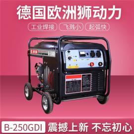高水平250A汽油�捎秒�焊�C