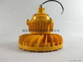 GB8050-油田用LED防爆灯50w、支架式LED防爆泛光灯