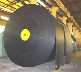 国家强度标准PVG1000S矿用抗静电整芯阻燃输送带
