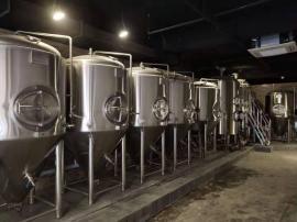 精酿啤酒北京赛车,1000升两锅三器自酿啤酒北京赛车,小型啤酒厂北京赛车