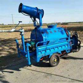 农药喷洒车 工地除尘专用小型电动洒水车 园林绿化电动洒水车