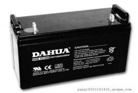 大华DAHUA蓄电池DHB12180/12v18ahUPS应急电池