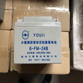 有利蓄电池6-GFM-100 12V100AH 文隆YOULI电池型号