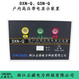 DXN-10Q带电显示装置gsn-10AQ