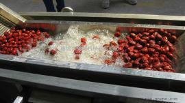 草莓清洗机 全自动蓝莓清洗机 安邦*生产
