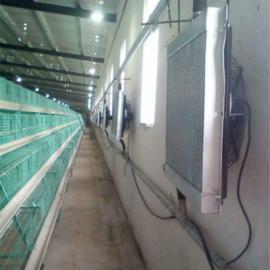 头一次见养殖加温锅炉 养殖场专用锅炉设备清单