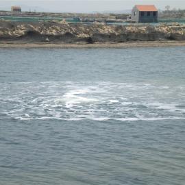 虾塘鱼塘海参水产增氧机