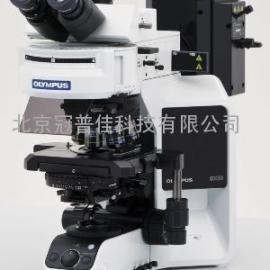 北京BX43荧光显微镜-价格满意