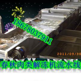 化冰解冻机/黄花鱼化冻机/解冻机春秋最专业案例最多