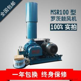 MSR100三叶罗茨鼓风机公司销售