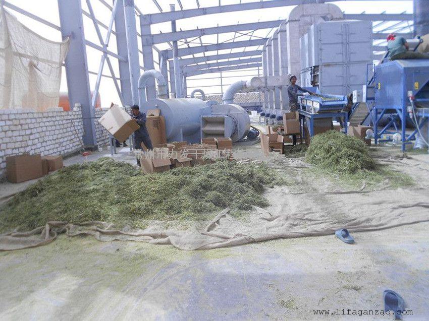 脱水蔬菜专用网带干燥机设备