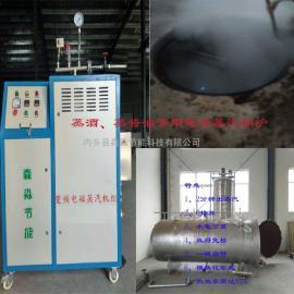 灭菌罐用蒸汽锅炉/食品蒸煮杀菌零排放电磁蒸汽发生器