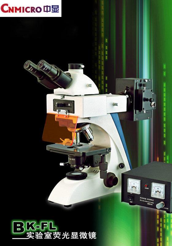 在荧光显微镜中多用低倍目镜