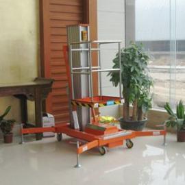 广州花都电动铝合金升降机GTWY8-100