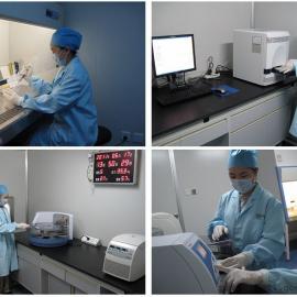 海南实验室规划设计施工,无菌室建设,专业实验室装修工程
