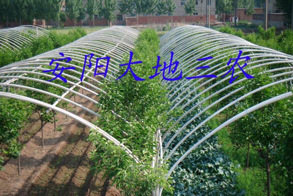 首页 供应产品 园林机械与景观设备 植保机械 温室大棚 >> 花卉大棚