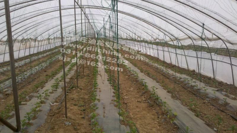 温室大棚蔬菜种植专用滴灌带