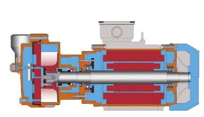 泵内部结构示意图