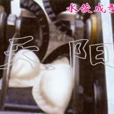 天阳饺子机
