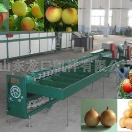 高效率油桃分选机,最先进油桃重量分级机