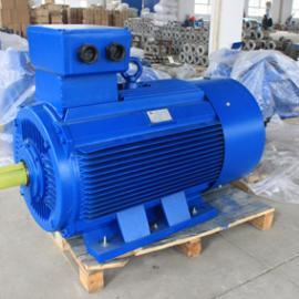 高效电机 超高效电机 二级能效电动机