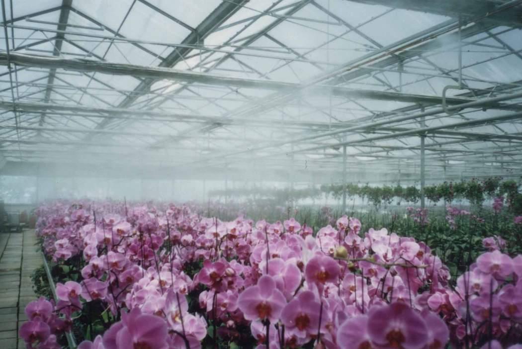 温室大棚类喷雾降温加湿器