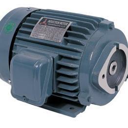 KEWAY电机 KEWAY油泵用电机5HP