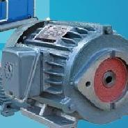 C07-43B0 5.5KW CHYUNTSEH油泵电机