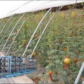 植物喷灌 农业灌溉 水处理设备 滴灌用水处理设备