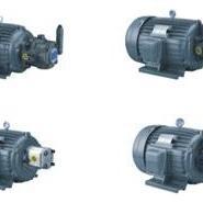 C02-43BO 2HP-4P HSL/HSW油压电机